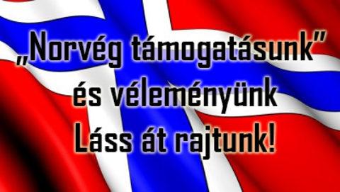 A Kék Norvég! Mi a baj vele? – véleményünk, programunk, költségvetésünk nyilvános!