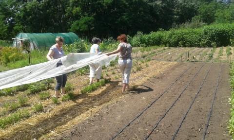 Képzést tartottunk helyi erőforrások és fenntarthatóság témában