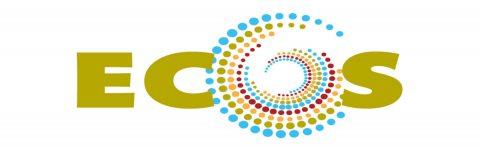 Európai Közösségszervező Iskola: Képzések és erőforrások kezdő és gyakorló közösségszervezőknek – felhívás érdeklődőknek